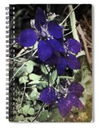 Collage By Mother Nature Spiral Notebook