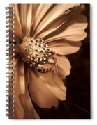 Collecting In Sepia Spiral Notebook
