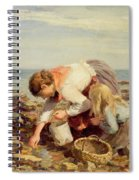Collecting Shells  Spiral Notebook
