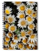 Collective Flowers Spiral Notebook
