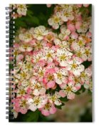 Colleen Spiral Notebook
