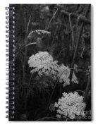 Colonial Garden At Twilight Spiral Notebook