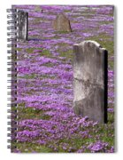Colonial Tombstones Amidst Graveyard Phlox Spiral Notebook
