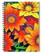 Color 53 Spiral Notebook