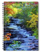 Color Alley Spiral Notebook