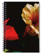 Color And Light Suspended Spiral Notebook