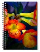 Color Burst Spiral Notebook