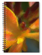 Color Burst Spiral Notebook