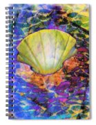 Color In Shell Spiral Notebook
