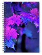 Color Me... Spiral Notebook