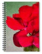 Color Me Red Spiral Notebook