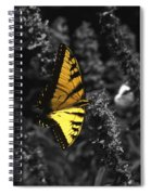 Color My World Spiral Notebook