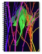 Color Under The Sea Spiral Notebook