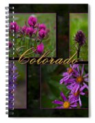 Colorado Beauty Spiral Notebook