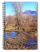 Colorado Beaver Ecosystem Spiral Notebook