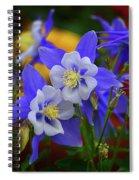 Colorado Columbine Spiral Notebook