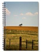 Colorado Crude Spiral Notebook