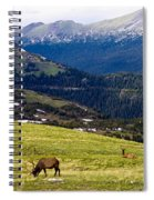 Colorado Elk Spiral Notebook