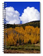 Colorado Fall 2 Spiral Notebook