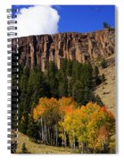 Colorado Fall 4 Spiral Notebook