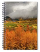 Colorado Fall Colors  Spiral Notebook
