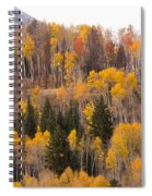 Colorado Fall Foliage Spiral Notebook