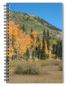 Colorado Gold Spiral Notebook