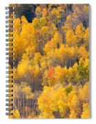 Colorado High Country Autumn Colors Spiral Notebook