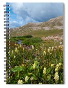 Colorado Late Summer Splendor Spiral Notebook