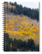 Colorado Mountain Aspen Autumn View Spiral Notebook