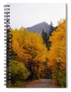 Colorado Road Spiral Notebook