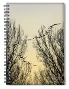 Colorado Sunsets 1 Spiral Notebook