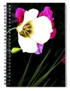 Colorado Wildflower1 Spiral Notebook
