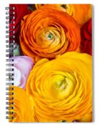 Colored Buttercup Flowers Spiral Notebook