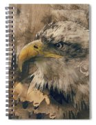 Colored Etching Of American Bald Eagle Spiral Notebook