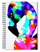 Colored Flamingo Spiral Notebook