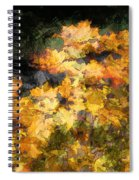 Colored Maple Leaves Spiral Notebook