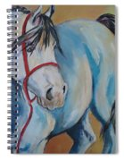 Colored Pony Spiral Notebook