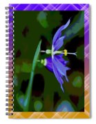 Colored World Spiral Notebook
