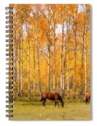 Colorful Autumn High Country Landscape Spiral Notebook