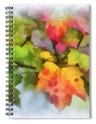 Colorful Autumn Leaves - Digital Watercolor Spiral Notebook
