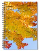 Colorful Autumn Reaching Out Spiral Notebook