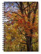 Colorful Autumn Tree In Southwest Michigan By Gun Lake Spiral Notebook