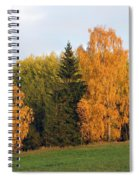 Colorful Autumn - Trees In Autumn Spiral Notebook