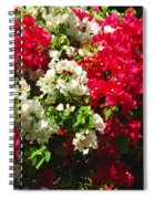 Colorful Bougainvilleas Spiral Notebook