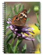 Colorful Butterfly On Daisy Spiral Notebook