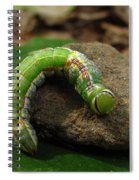Colorful Caterpillar  Spiral Notebook
