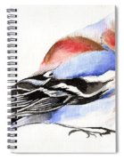 Colorful Chaffinch Spiral Notebook