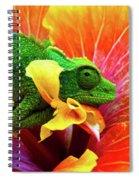 Colorful Chameleon Spiral Notebook