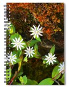 Colorful Chickweed Spiral Notebook